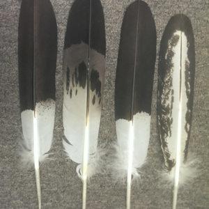 Faux Eagle Feathers