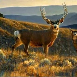 """""""A Moment In Time"""" by Nancy Glazier Limited Edition Paper Print"""